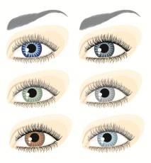 Augenfarben