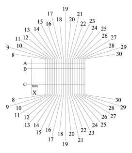 SBF grid