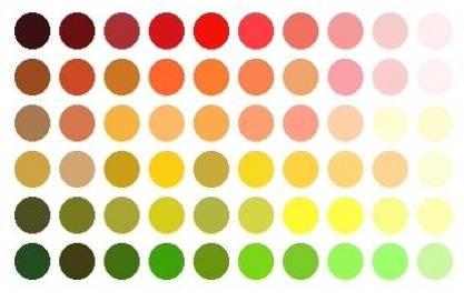 Monturen die bij uw kleurtype passen for Wat zijn de koele kleuren
