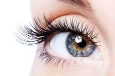 informacje o wzroku